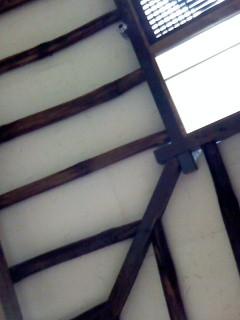 200803025.jpg