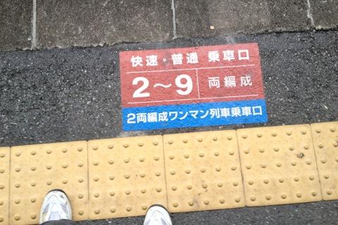 20121110161000006.JPG