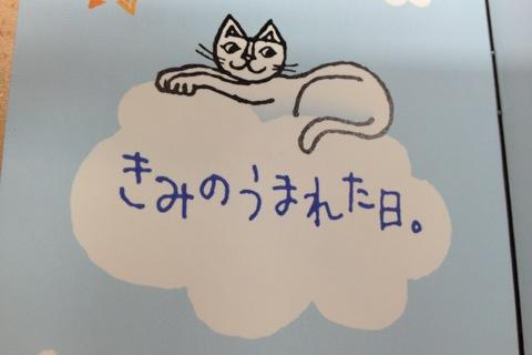 20130114210808.JPG
